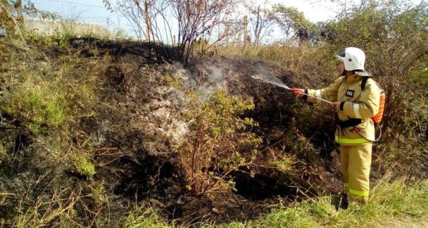 В Крыму горят трава и кустарники. МЧС призывает быть осторожнее