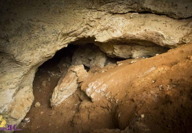 """Пещеру, обнаруженную при строительстве трассы """"Таврида"""", будут показывать туристам"""