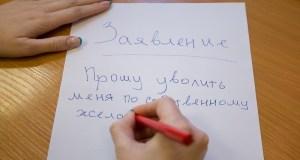 Сотрудники детсадов ЧФ в Севастополе не хотят работать в городской системе образования