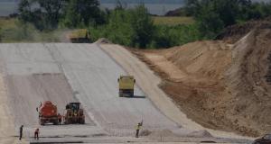 Вместо срубленных на стройке трассы «Симферополь – Евпатория – Мирный» сосен высадят новые