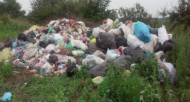В Симферопольском районе бизнесмены причинили ущерб экологии на 27 млн рублей