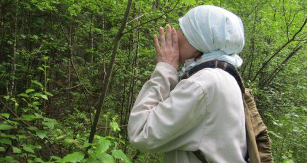 Крымчанка сходила «по грибы» и заблудилась в районе Ангарского перевала