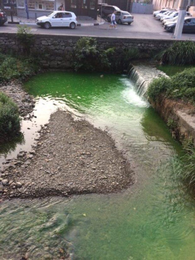 Почему ялтинская речка Дерекойка окрасилась в ядовито-зеленый цвет
