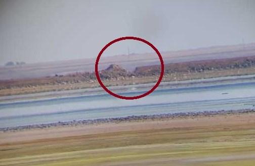 Дамба, разделяющая Сиваш и кислотонакоитель «Крымского Титана», разрушена со стороны Украины