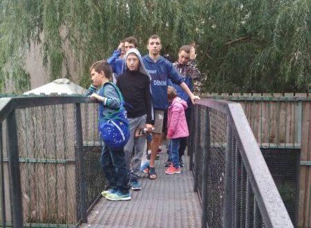 Воспитанники Центра помощи детям, оставшимся без попечения родителей «Наш дом», посетили Ялтинский зоопарк