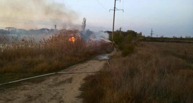 Горел камыш… Возгорание сухой растительности в Бахчисарайском районе