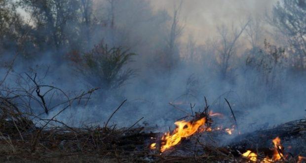 Лесные пожары в Крыму: возгорание едва не помешало работе канатной дороги
