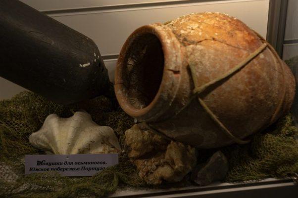 В Феодосии открылся Музей рыбы и рыболовства