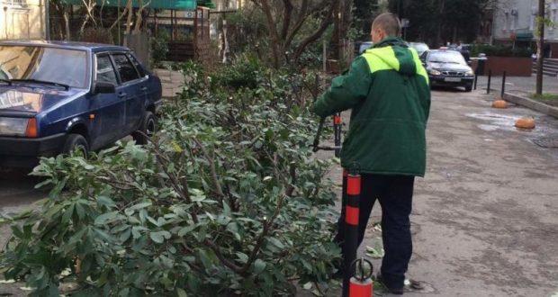 Коммунальные службы наводят порядок на улице Васильева в Ялте
