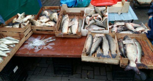 """В Севастополе предлагают покупателям рыбу """"с душком"""""""