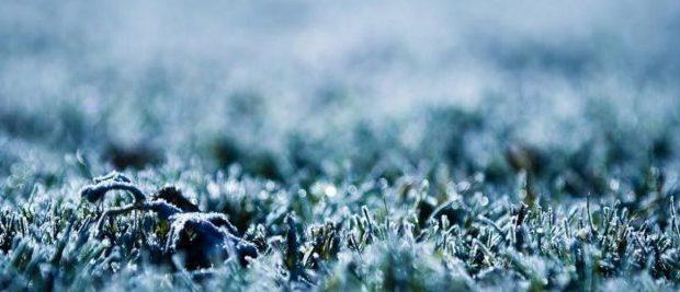 Холодно. В конце недели в Крыму весеннего тепла не будет