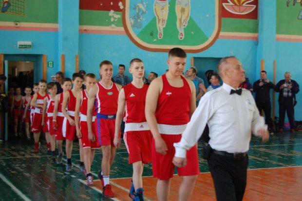 «Доброволец» поддерживает юных боксеров Балаклавы и Севастополя