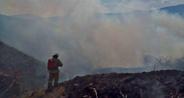 За прошедшие сутки на полуострове ликвидировано 19 пожаров, 12 из которых были связаны с возгораниями сухой растительности. Как сообщил Министр чрезвычайных ситуаций Республики Крым Сергей Шахов, за прошедшие сутки на полуострове ликвидировано 19 пожаров, 12 из которых были связаны с возгораниями сухой растительности. Так, например, вчера в 11:02 в службу спасения поступило сообщение о пожаре в районе с.Приветное Кировского района. К месту вызова были направлены сотрудники пожарной части 109 ГКУ РК «Пожарная охрана Республики Крым» в составе 3-х человек и 1 единицы техники. По прибытии огнеборцы обнаружили, что горит сухая растительность на открытой территории. «В непосредственной близости от очага возгорания находился лес. Кроме того, порывистый ветер и сухая погода способствовали тому, что огонь очень быстро переходил на большую площадь и мог достигнуть лесного массива. Тогда уже масштабы пожара могли стать несоизмеримо больше», - сообщил Сергей Шахов. Во избежание распространения огня сотрудники пожарной охраны незамедлительно локализовали возгорание, и уже через 30 минут пожар был полностью ликвидирован. Площадь возгорания составила 400 кв.м. Причины возникновения огня установят эксперты. «С начала апреля только сотрудники «Пожарной охраны Республики Крым» уже более 20 раз привлекались к ликвидации возгораний сухой растительности, площадь которых составила от 100 квадратных метров до нескольких гектар, - отметил Сергей Шахов. - Как правило, в большинстве случаев возгорания происходят по вине человека. Напоминаю о том, что в Крыму установлен летний пожароопасный сезон, поэтому необходимо строго соблюдать правила пожарной безопасности». Крымские спасатели обращаются к жителям и гостям полуострова: не бросайте и не выбрасывайте из окон автомобилей непотушенные окурки; не позволяйте играть со спичками детям; не оставляйте в лесу мусор, особенно обтирочный материал, пропитанный маслом, бензином или другим горючим материалом; не поджигайте камыш, не выжигайте сухую тр