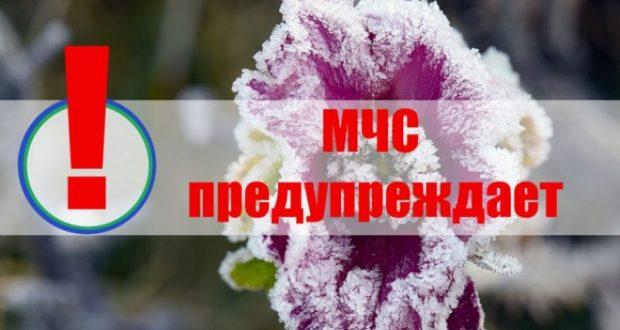 В МЧС предупредили аграриев и автомобилистов о ночных заморозках 25 и 26 апреля в Крыму