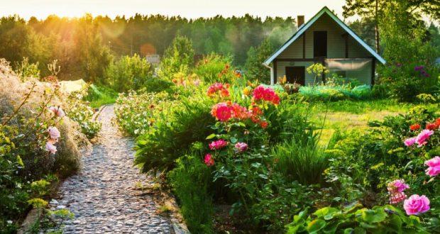 Ликбез: как оформить дачный участок в собственность?