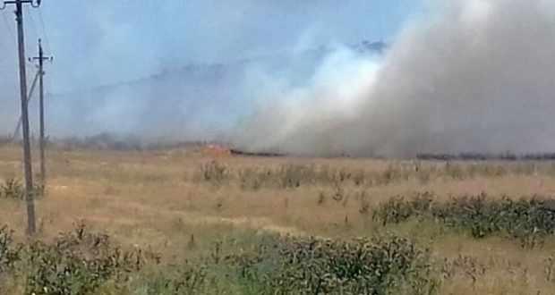 «Рекордный» понедельник: в Крыму за одни сутки зафиксирован 21 пожар