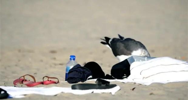 На пляж с банковской картой, с пляжа - без карты. Инцидент в Севастополе