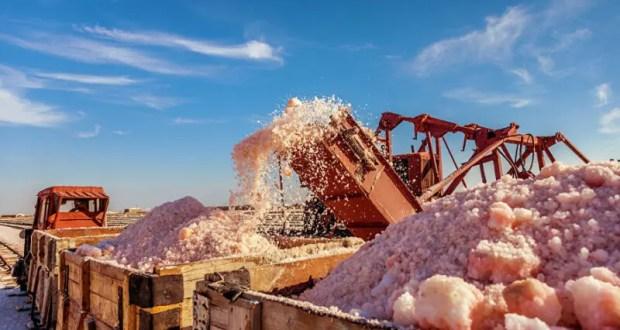 Евпатория намерена привлекать туристов новым турмаршрутом. Розовую соль видели?