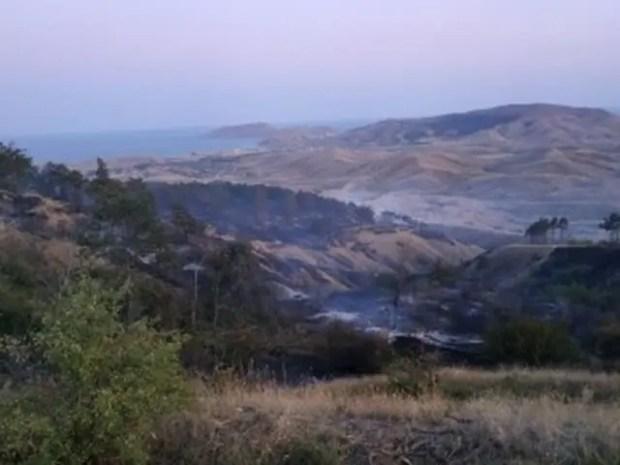 Пожар на территории Старокрымского лесничества: выгорело 8 гектаров редколесья