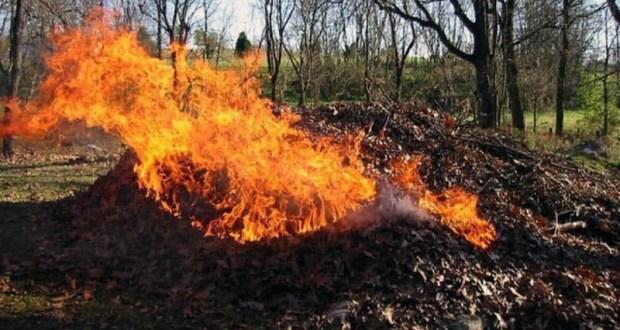 В Крыму в этом году произошло три тысячи пожаров, связанных с возгоранием сухой растительности