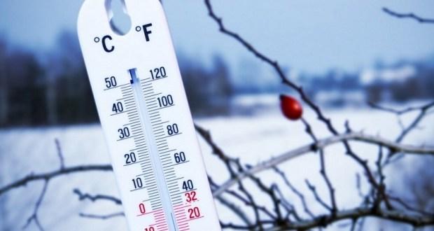 На следующей неделе в Крыму потеплеет, да и вообще нас ожидает теплая «розовая зима»