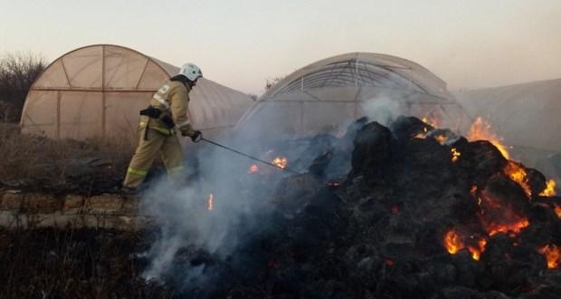 Хроника пожаров в Крыму: за минувшие сутки ликвидировано 17 возгораний