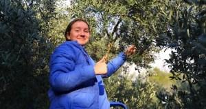 Viva la олива! В «Артеке» прошел праздник сбора урожая