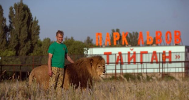 Скандал вокруг парка львов «Тайган»: спор на тему вакцинации
