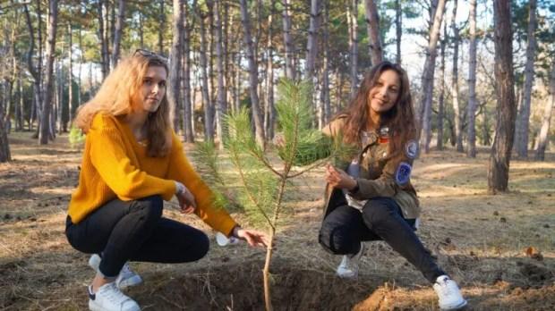 Ботанический сад КФУ пополнился деревьями. Постарались бойцы студенческих отрядов