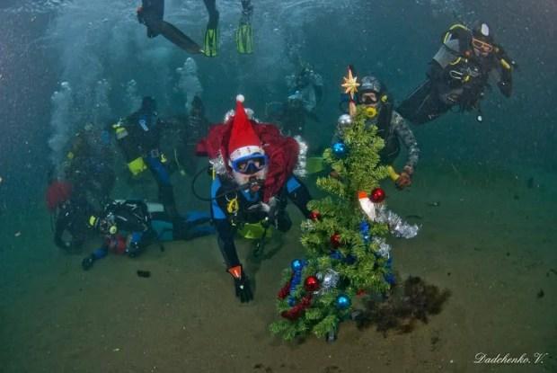 Крымские дайверы водили хоровод вокруг подводной елочки
