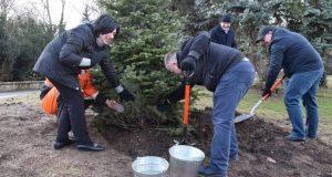 В парке им. Ю.А. Гагарина в Симферополе высадили деревья и кустарники. Много
