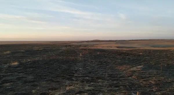 Горит в Крыму сухая растительность. Только за минувшие сутки потушены 9 возгораний
