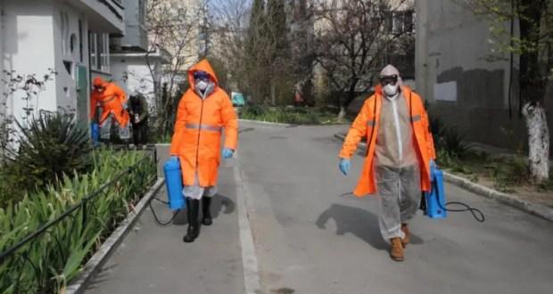 Севастопольские управляющие компании обрабатывают общественные пространства города