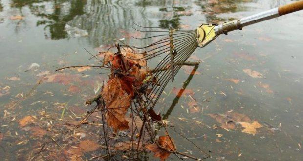 В Детском парке Симферополя анонсируют масштабную очистку пруда
