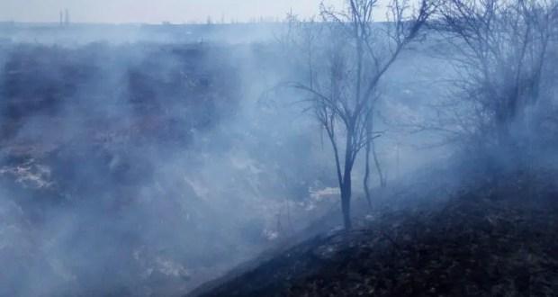 Пожароопасный сезон только стартовал, но в Крыму за сутки тушат порядка 10 возгораний сухой растительности