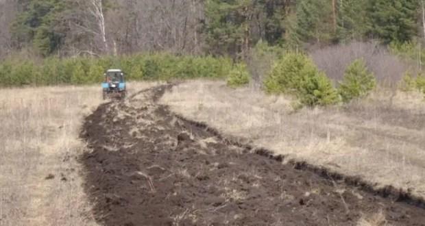 В Евпаторийском лесном хозяйстве идут работы по противопожарному обустройству леса