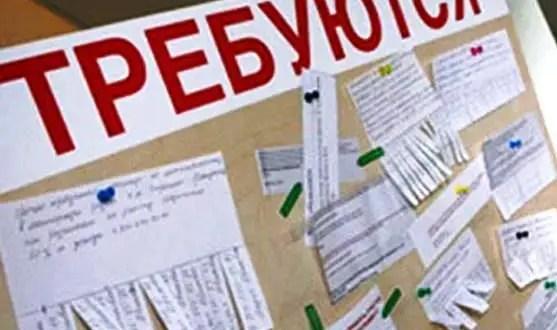«Выйти из сумрака!». За один день Центры занятости Крыма проконсультировали почти три тысячи человек