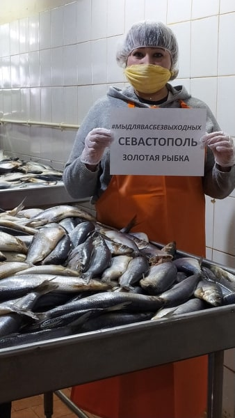 Севастопольские предприятия рыбной отрасли продолжают работать