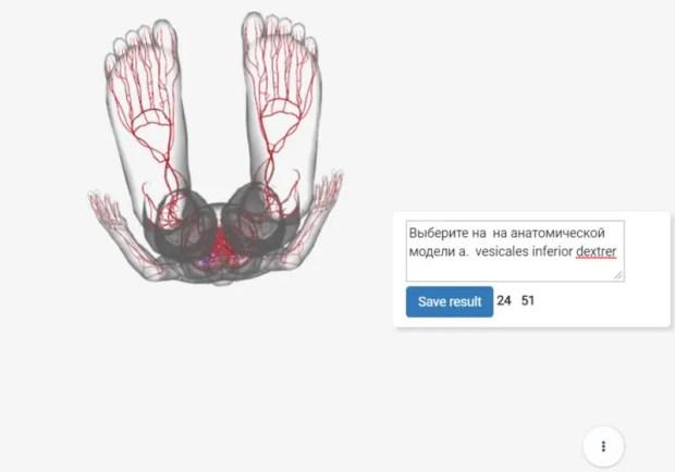 Крымские учёные разработали систему онлайн-тестирования по анатомии человека