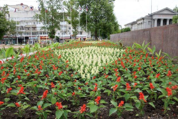 В Симферополе главную площадь украсили 10 тысячами цветов