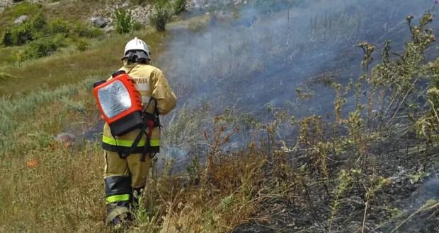 В 2020 году в Крыму ликвидировали более 600 пожаров, связанных с возгоранием сухой растительности