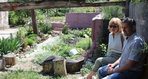 Встречи «Добровольца»: оазисы Балаклавы, которым нужно помогать