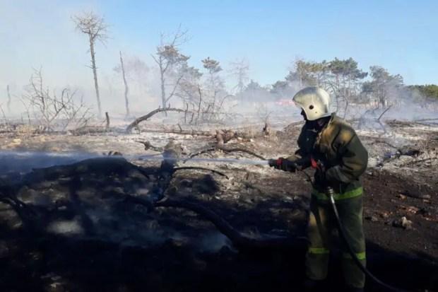 В Севастополе тушат крупный пожар. Огонь бушует на территории балки Бермана