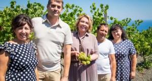 Крымская «Массандра» открыла сезон виноделия-2020
