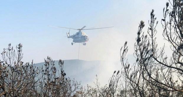 Лесной пожар под Судаком потушили морской водой