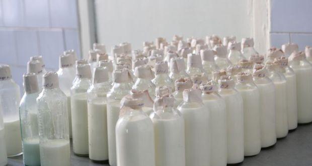 В Севастополе начнёт работу молочная кухня. Как получить направление на питание?