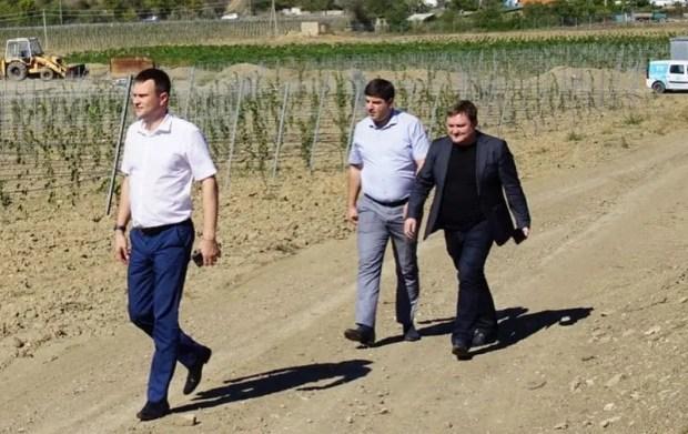 Строительство индустриального парка и закладка виноградников: как развиваются инвестиционные проекты в Крыму