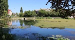 Даниловский пруд в Симферополе приведут в порядок. Но не сейчас, а через два года