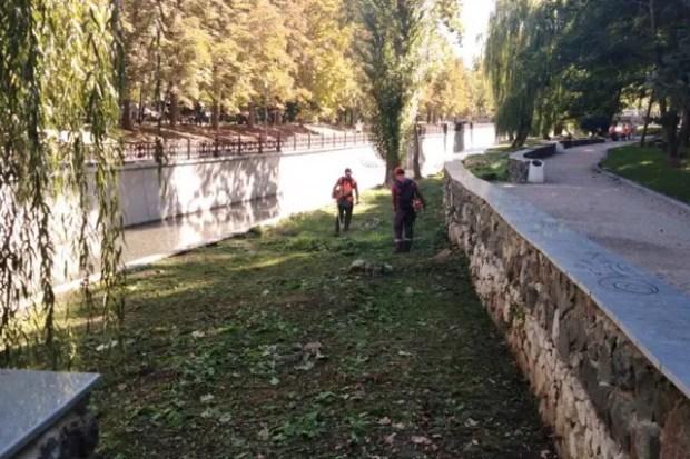 Коммунальщики Симферополя расчищают русло реки Салгир. Говорят, это «полноценный уход и очистка»