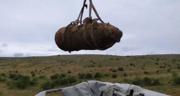В Крыму едва ли не каждый день обезвреживают боеприпасы ВОВ. Десятками